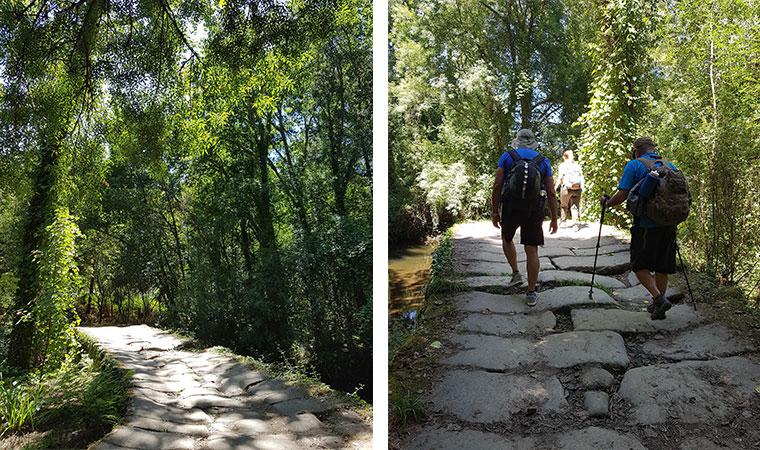 Mi Camino de Santiago la experiencia la reflexión