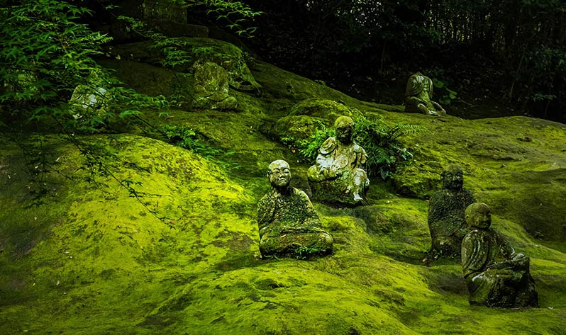Qué podemos aprender del budismo como filosofía - Japón Zen