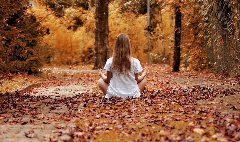 Meditar, tu gran propósito de Año Nuevo - Bosque
