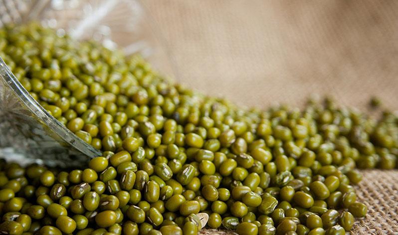 Depuración de primavera - Soja verde