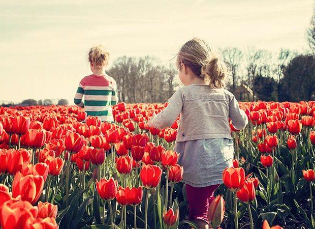 Meditación y yoga para combatir la alergia esta primavera - Portada