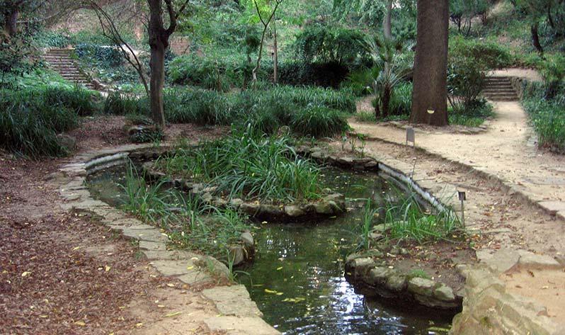 Sitios para meditar en Barcelona al aire libre - Botànic