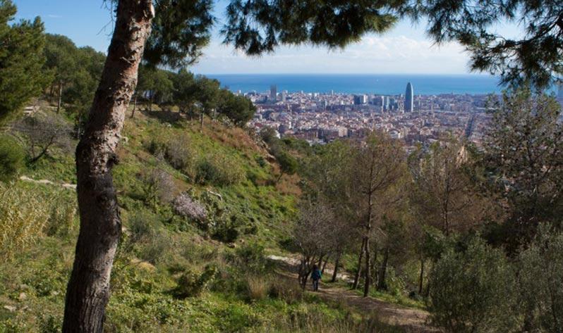 Sitios para meditar en Barcelona al aire libre - Parc del Guinardó
