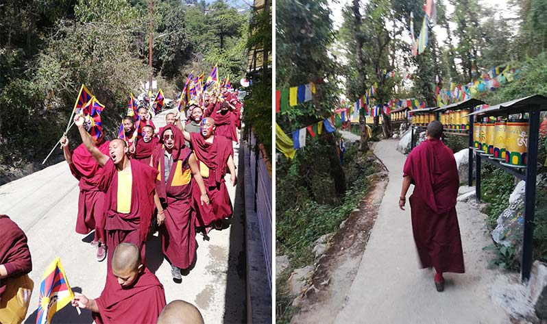 Vivir la India - Monjes tibetanos