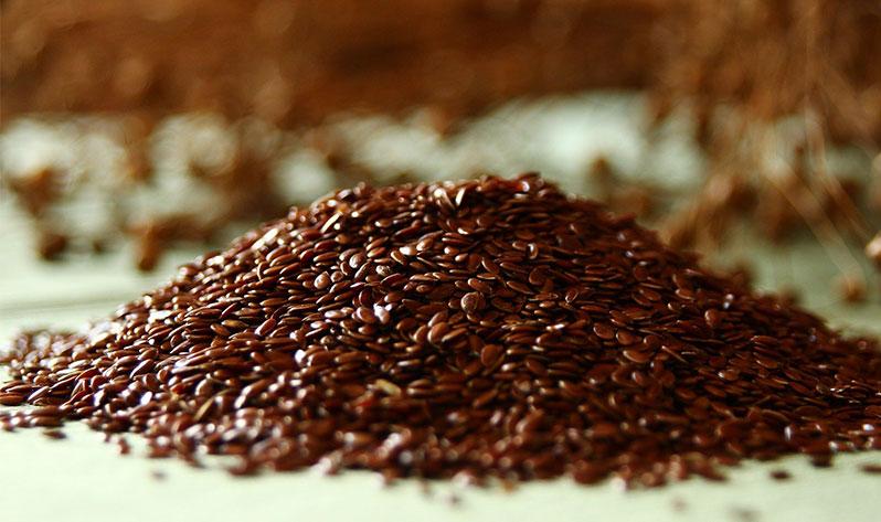Qué comer para mejorar el sistema inmunitario - Semillas de lino