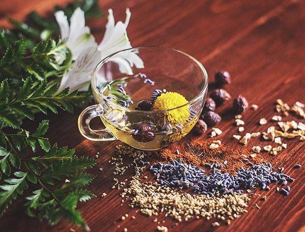 Ayurveda: la medicina tradicional de la India basada en el equilibrio - Extractos
